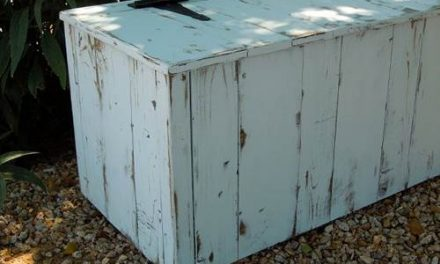 clear your clutter with cedar wood storage trunks by lori sanders